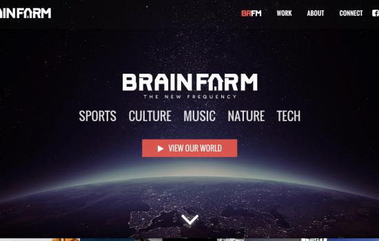 brainfarm-screenshot